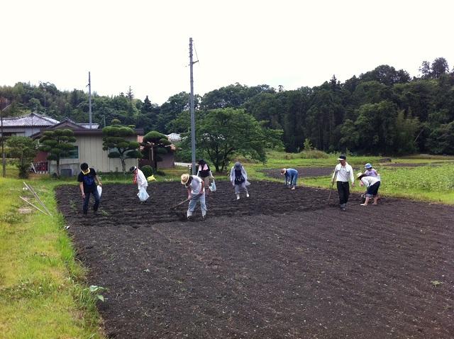 みんなでひまわり種まき 奈良県五條市 和歌山県橋本市