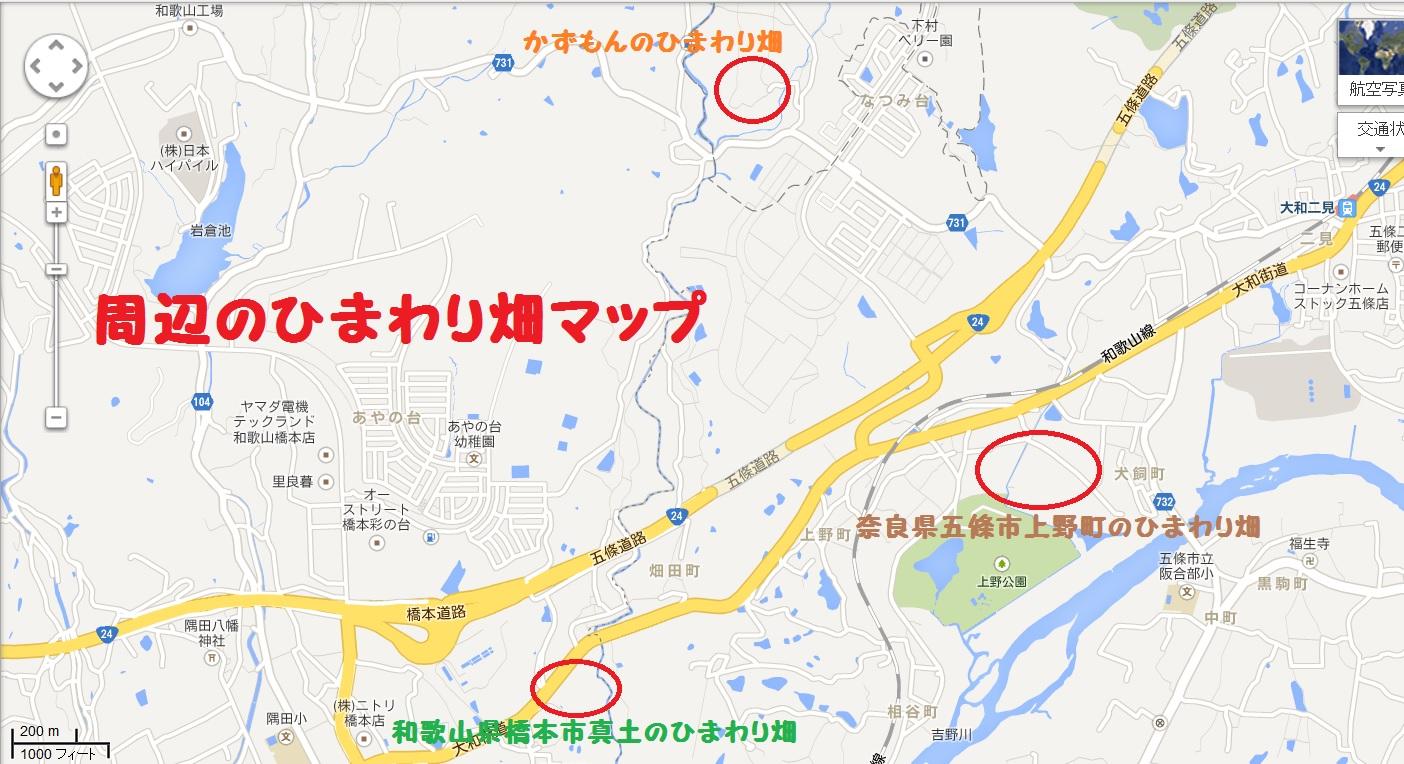 橋本市 五條市 周辺のひまわりマップ 上野町 真土
