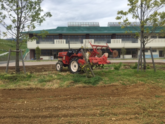 橋本市 あやの台小学校 ひまわり畑